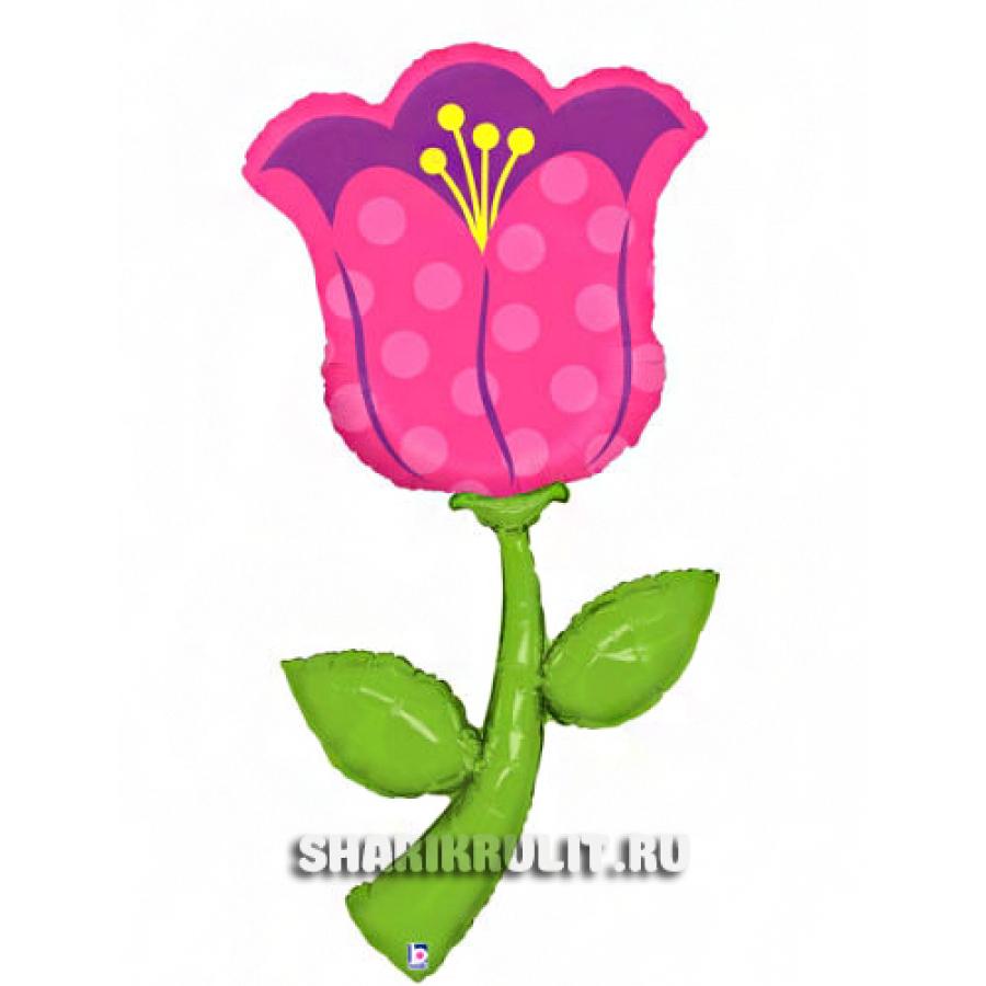 Шар фольгированный  Тюльпан
